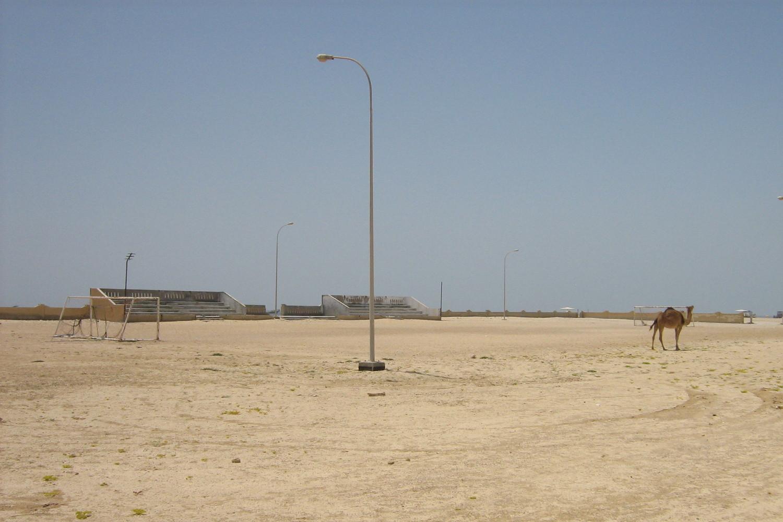Kamel auf dem Fußballfeld